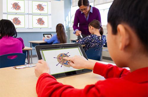 Les écrans interactifs connectés se différencient en plusieurs types